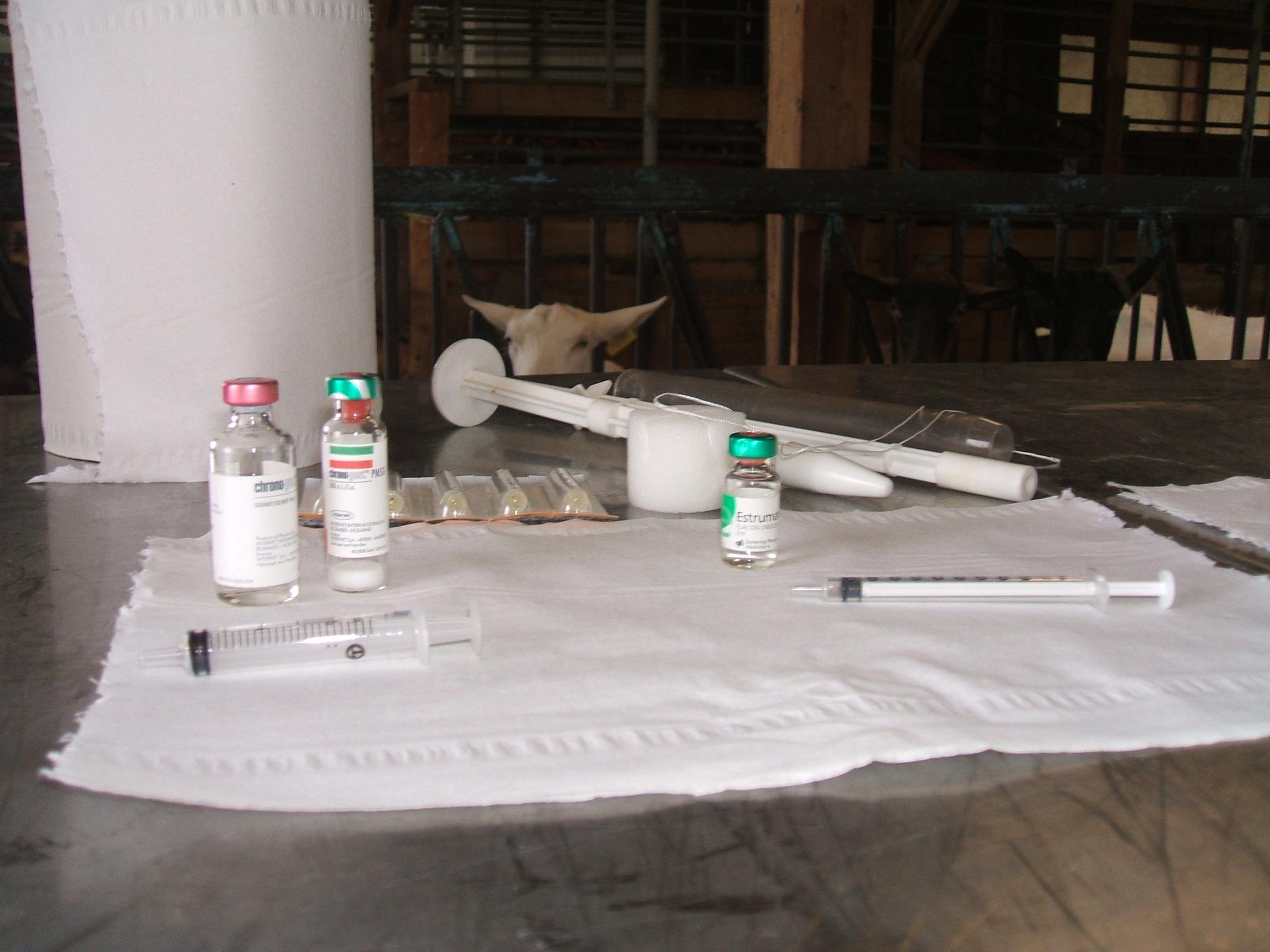 Matériels utilisés pour le traitement hormonal de synchronisation