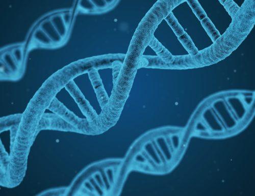 Inventaires génétique printemps 2018