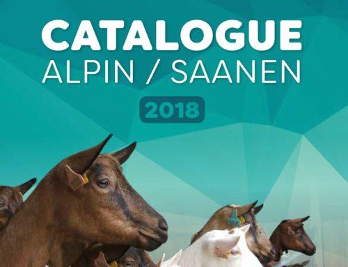 Catalogue des boucs d'IA 2018
